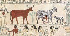 De eerste huisdieren verschenen in de steentijd. Dat mensen wilde dieren en hun nakomelingen gingen inschakelen voor hun eigen leefwijze, heeft de samenleving diepgaand beïnvloed. Als de mensen in Eurazië bijvoorbeeld zo'n vijfduizend jaar geleden niet het paard hadden gekweekt uit de wilde paarden die daar rondzwierven, dan had de geschiedenis er heel anders uitgezien.