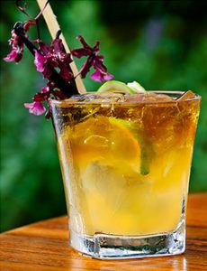 Gaylord's Mai Tai Cocktail