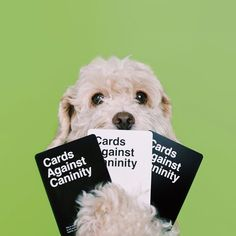 Pin for Later: This Fan-Made Cards Against Humanity Expansion Pack Will Have You LOLing