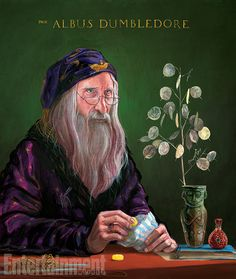 Albus Dumbledore Harry Potter and the Philosophers Stone Harry Potter Fan Art, Harry Potter Film, Harry Potter Jim Kay, Harry Potter Pottermore, Magie Harry Potter, Harry Potter Magic, Harry Potter Tumblr, Harry Potter World, James Potter