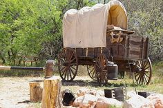 Official Vehicle of Texas: Chuck Wagon. Designated by SCR 8, 79th Regular Session (2005) authored by Sen. Kel Seliger, co-authored by Sen. Robert Duncan, and sponsored by Rep. Warren Chisum. [Image by flickr user Al_HikesAZ] Read the resolution at: http://www.legis.state.tx.us/tlodocs/79R/billtext/pdf/SC00008F.pdf#navpanes=0