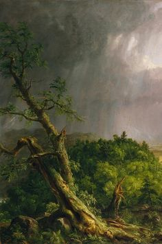 Thomas Cole: View from Mount Holyoke, Northampton, Massachusetts, after a Thunderstorm--The Oxbow River Painting, Forest Painting, Romantic Paintings, Paintings I Love, Landscape Art, Landscape Paintings, Carl Spitzweg, Hudson River School, Cool Landscapes