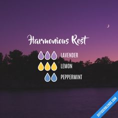 Harmonious Rest - Essential Oil Diffuser Blend