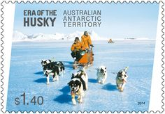 Stamps celebrating the Era of the Husky are now on sale. Huskies were first used in Antarctica by the British Antarctic Expedition in 1898–1900. Little more than a decade later, Douglas Mawson used huskies during his 1911–14 Australasian Antarctic Expedition. In 1954, when Australia established its first permanent Antarctic station at Mawson, huskies were introduced to the Australian territory.  http://auspo.st/1rU0gRQ. #stampcollecting