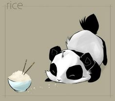 Cute Anime Panda | photo