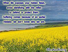 Hidden Flaws