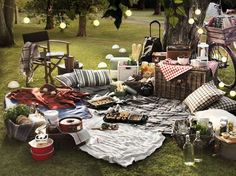 Late afternoon summer picnic. Love the lighting.