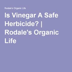 Is Vinegar A Safe Herbicide?   Rodale's Organic Life