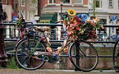 En Holanda, no sin una bici | Ventanilla o Pasillo | Blogs | Ocholeguas | elmundo.es