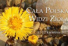 cala polska 2b
