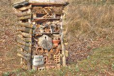 Insektenhotel - Bilder und Fotos