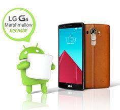 Sur le LG G4, Marshmallow arrivera en France avant la fin 2015 - http://www.frandroid.com/marques/lg/318279_sur-le-lg-g4-marshmallow-arrivera-en-france-avant-la-fin-2015  #LG, #MisesàjourAndroid, #Smartphones