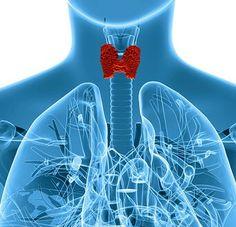 Selenium Benefits, Signs of Deficiency,
