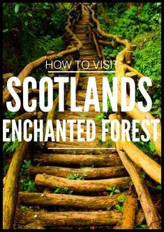 Where, How and Why You Must Visit Scotlands Enchanted Forest - Hand Luggage Only…