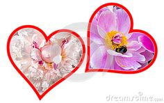 A picture of two flower hearts silhouettes for the Valentine& x27;s day