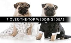 You've got to see these to believe them!! http://www.countryoutfitter.com/style/7-over-the-top-wedding-ideas/