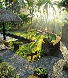 Connect with nature while meditating in the Philippines.