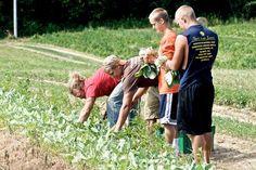 100 Freedom Farms Ideas Farm Kings Farm King