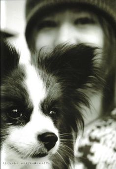 This one looks exactly like my Ellie who is over the Rainbow Bridge