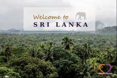Sri Lanka through our lenses..humble monks, delicious tea, odorous cinnamon, crazy monkeys and many more...just taste it