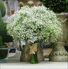 Wedding Humor, Diy Wedding, Wedding Ideas, Bridesmaid Bouquet, Wedding Bouquets, Holidays And Events, Save The Date, Wedding Planning, Garden