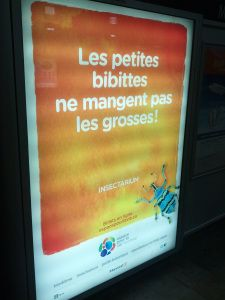 Les petites bibittes ne mangent pas les grosses (#913) | OffQc | Quebec French Guide