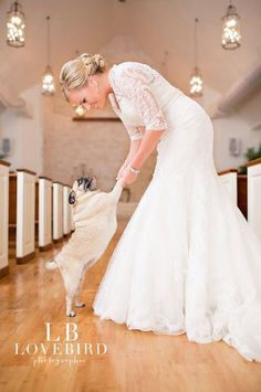 TATTLE- HOW TO INCLUDE MAN'S BEST FRIEND IN A WEDDING LB Lovebird Photographer