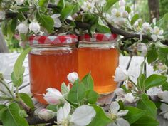 Apple blossom jelly- fragrant, tangy apple blossom jelly produced at our Jams & Jellies Workshops Salzburg, Culinary Arts, Moscow Mule Mugs, Lbd, Jelly, Arts And Crafts, Apple, Canning, Tableware