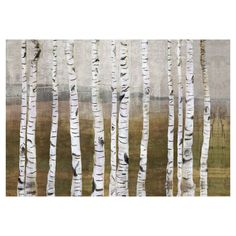 Canvas giclee print with a birch trees motif.    Product: CanvasConstruction Material: Canvas and MDFFea...