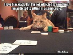 """""""I love blackjack. But I'm not addicted to #gambling. I'm addicted to sitting in a semi circle."""" - Mitch Hedberg (1968-2005) Try Sports Insights Free for 7 Days! - https://www.sportsinsights.com/landing-pages/si-sportsbook-insider-free-trial.html"""