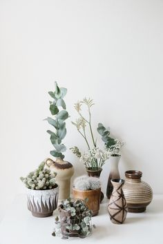 Room decoration using cactus is never ending. Starting from the real cactus, cactus displays, to the cactus made of stone. Methods, planting media, and pots used to plant cactus and important infor… Small Cactus, Vintage Planters, Ceramic Planters, Cacti And Succulents, Plant Decor, Home Decor Inspiration, Decoration, Indoor Plants, Potted Plants