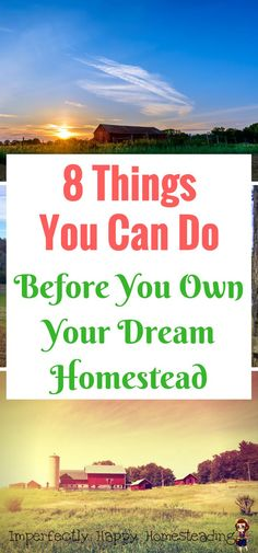 8 Things You Can Do Even Before You're On Your Dream Homestead - backyard homesteading, vintage skills urban farm.
