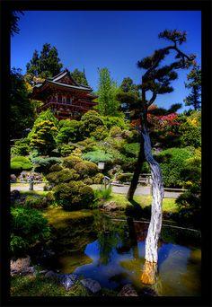 Japanese Tea Garden San Francisco, California