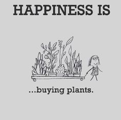 Gardening Quotes to Brighten Your Day If you agree with most of these gardening quotes you are definitely a true gardener! The post Gardening Quotes to Brighten Your Day appeared first on Garden Ideas. Gardening Supplies, Gardening Tools, Gardening Memes, Kitchen Gardening, Garden Compost, Gardening Gloves, Garden Care, Plants Quotes, Design Jardin