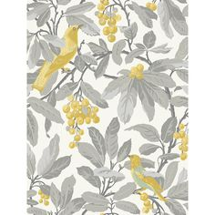 Royal Garden Yellow Wallpaper from Cole & Son Historic Royal Palaces Collection. A large scale wallpaper featuring colourful golden yellow birds in a grey cherry tree on a cream background. Luxury Wallpaper, Wallpaper Roll, Designer Wallpaper, Royal Wallpaper, Grey Wallpaper, Wallpaper Panels, Pattern Wallpaper, Grey Yellow, Green And Purple