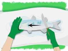 How to Clean/Gut a Fish