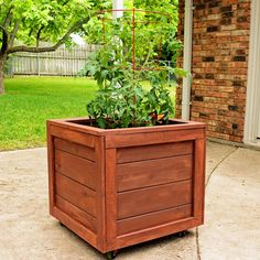 This DIY Planter Box with Wheels is perfect for any patio or garden area. It works perfectly for vegetables or flowers. And rolls where ever you want it. Tutorial is loaded with photos and step-by-step instructions to make this in one morning. Wooden Planter Boxes Diy, Wood Pallet Planters, Diy Planters, Wooden Diy, Backyard Projects, Outdoor Projects, Outdoor Decor, Woodworking Projects Diy, Diy Wood Projects