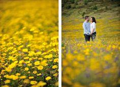 fotografia casamentos fine art sessao Noivado artistica Natureza campo Flores Primavera Sintra Serra Foto de Sonho