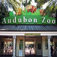 Audubon Zoo, New Orleans - It's wonderful, I love it....you must go!