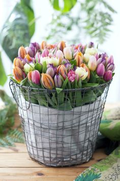 wire baskets and burlap for flower displays and easter eggs.