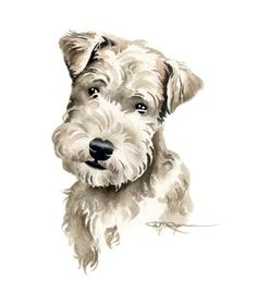 LAKELAND TERRIER PUPPY Dog Watercolor Painting Art by k9artgallery, $12.50
