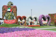 Dubai Miracle Garden - Definito il giardino più bello del mondo è un enorme spazio che ospita 45 milioni di fiori su una superficie di 72000 metri quadri.