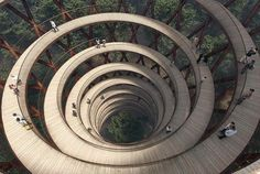 Camp Adventure Treetop Experience, A Gorgeous Circular Walkway That Rises Amongst the Trees
