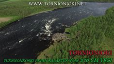 Tornionjoki - Vuennonkoski Fly Fishing - Vuennonkoski Perhokalastus. #tornionjoki #vuennonkoski #matkakoski #fishing #kalastus #riverbug #putkiperhot #finnlures #salmon #salmonfishing #saumon #lachs #laks #spinfluga #punttikalastus #flyfishing #perhokalastus #rangerkalavinkit #repofly #mustakettu #lax #laxfiske #visitlapland #visittornio #tornio #lohenkalastus #kukkolankoski #kattilakoski #lohensoutu #lohivaappu #vaappu #heittokalastus #korpikylä #summer #sights #sweden #lohiperhot #diy… Visit Sweden, Salmon Fishing, Fly Fishing, Finland, Photo S, Country Roads, River, Summer, Pictures