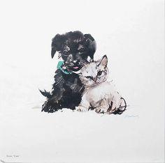 Animalarium: Like Cats & Dogs