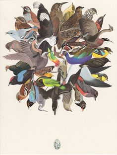 Family of Birds by Michael Tunk, via Flickr
