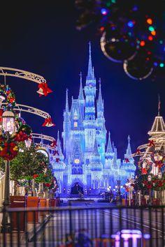 Disney Parks, Walt Disney World, Disney Christmas, Christmas Tree, Cinderella Castle, Time Of The Year, Magic Kingdom, Wonderful Time, Disneyland