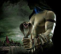 60 Best Shiva Images Indian Gods Shiva Shakti Deities
