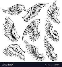 Картинки по запросу different bird wings