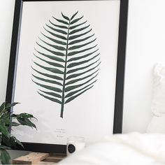 A repost of this beautiful image pf our Cocos print by @kirstydawn_ - we love it !  Find the print at  Bygarmi.com